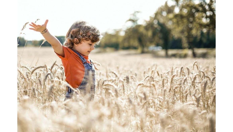 5 astuces pour expliquer les saisons aux enfants